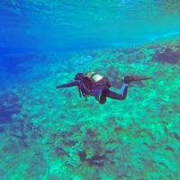 Adventures Of Scuba-diving and Waterfall in Goa